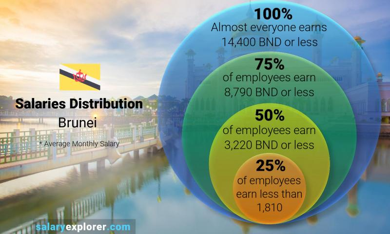 Median and salary distribution monthly Brunei