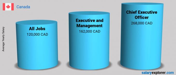 Salary Comparison Between Chief Executive Officer and Executive and Management yearly Canada