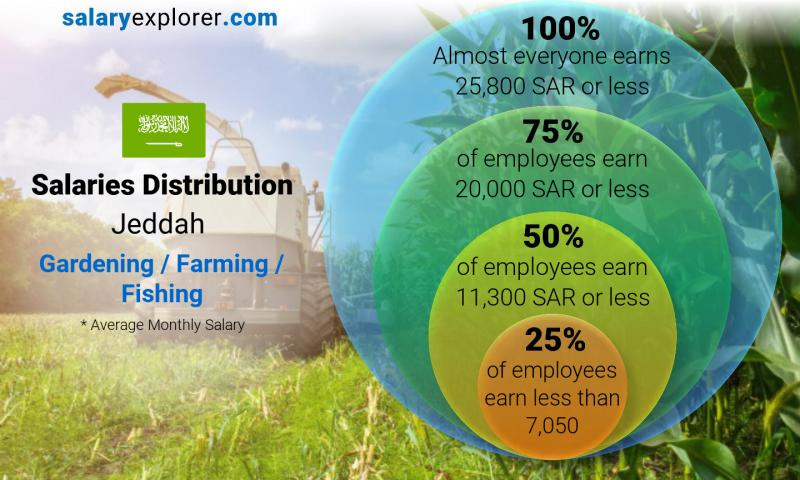 Median and salary distribution monthly Jeddah Gardening / Farming / Fishing