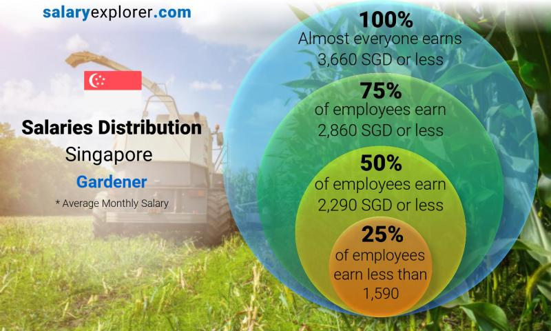 Median and salary distribution monthly Singapore Gardener