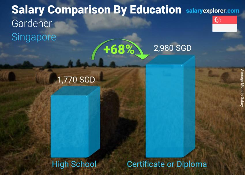 Salary comparison by education level monthly Singapore Gardener