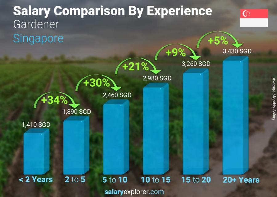 Salary comparison by years of experience monthly Singapore Gardener