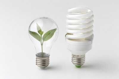 Money Saving Tip: Use Energy Efficient Bulbs